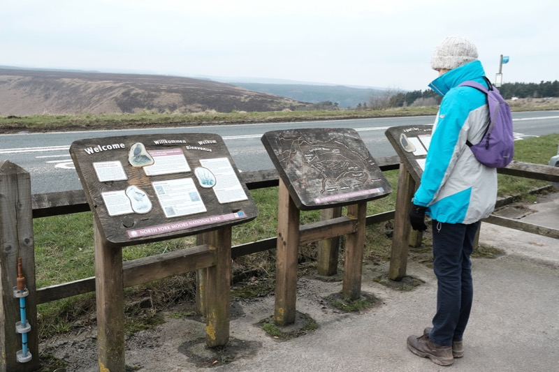 Annie studying the hand-carved map of the Hole of Horcum