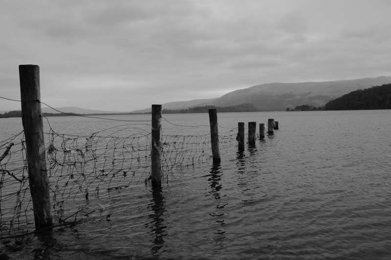 Fence running into Loch Lomond